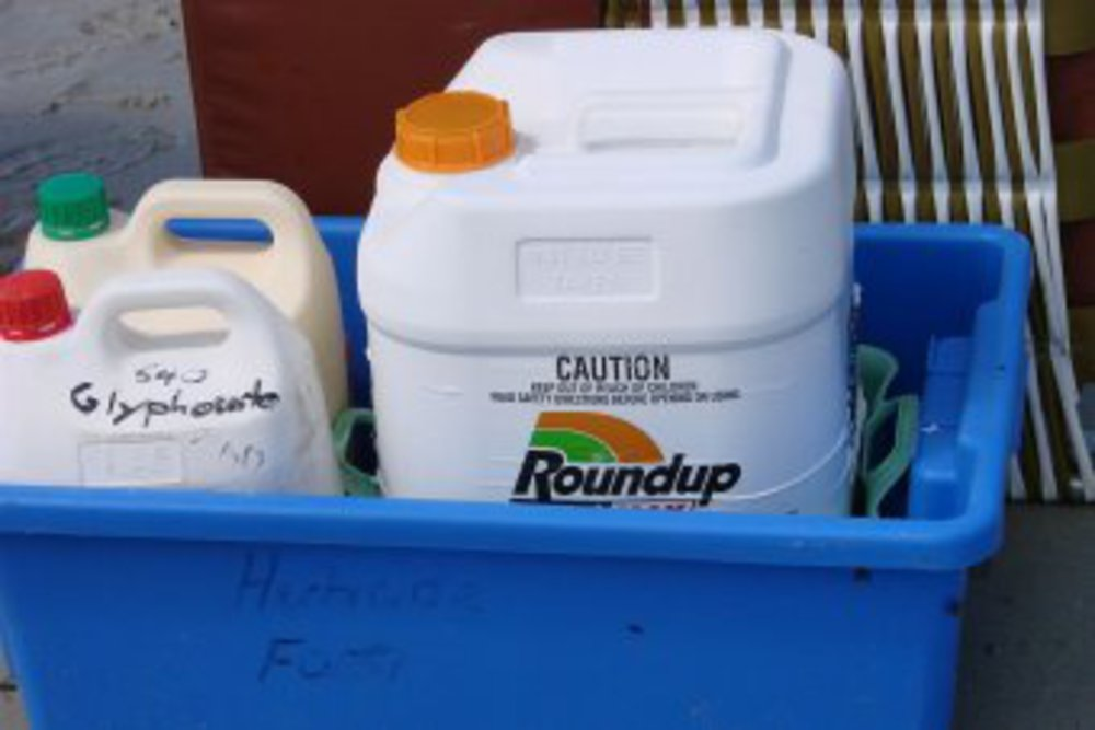 Local councils still using weed killer glyphosate despite WHO warning it 'probably causes cancer' - ABC News (Australian Broadcasting Corporation)