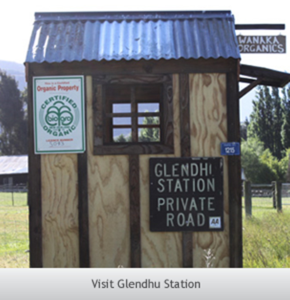 Wanaka Organics at Glendu Station - farmgate shop; eggs