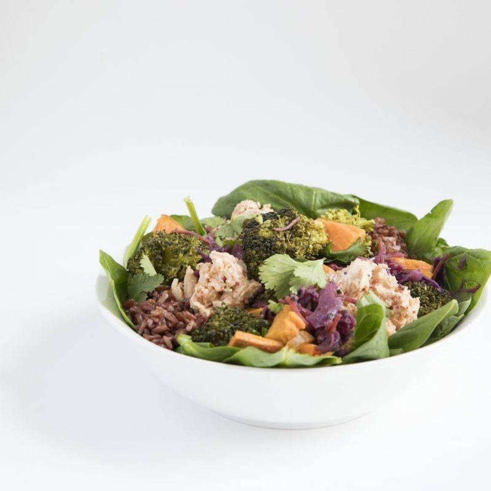 Sla - Organic salad bar; GF friendly; kombucha; specialty coffee