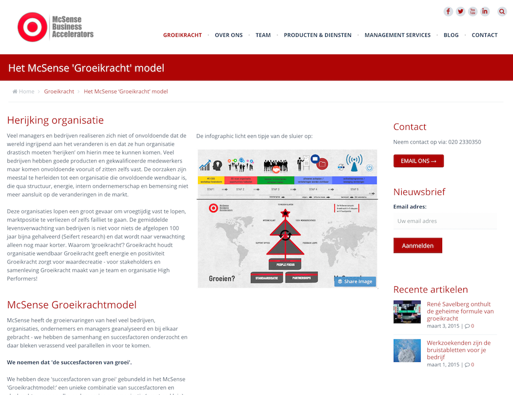 McSense Consultancy Digital Strategy