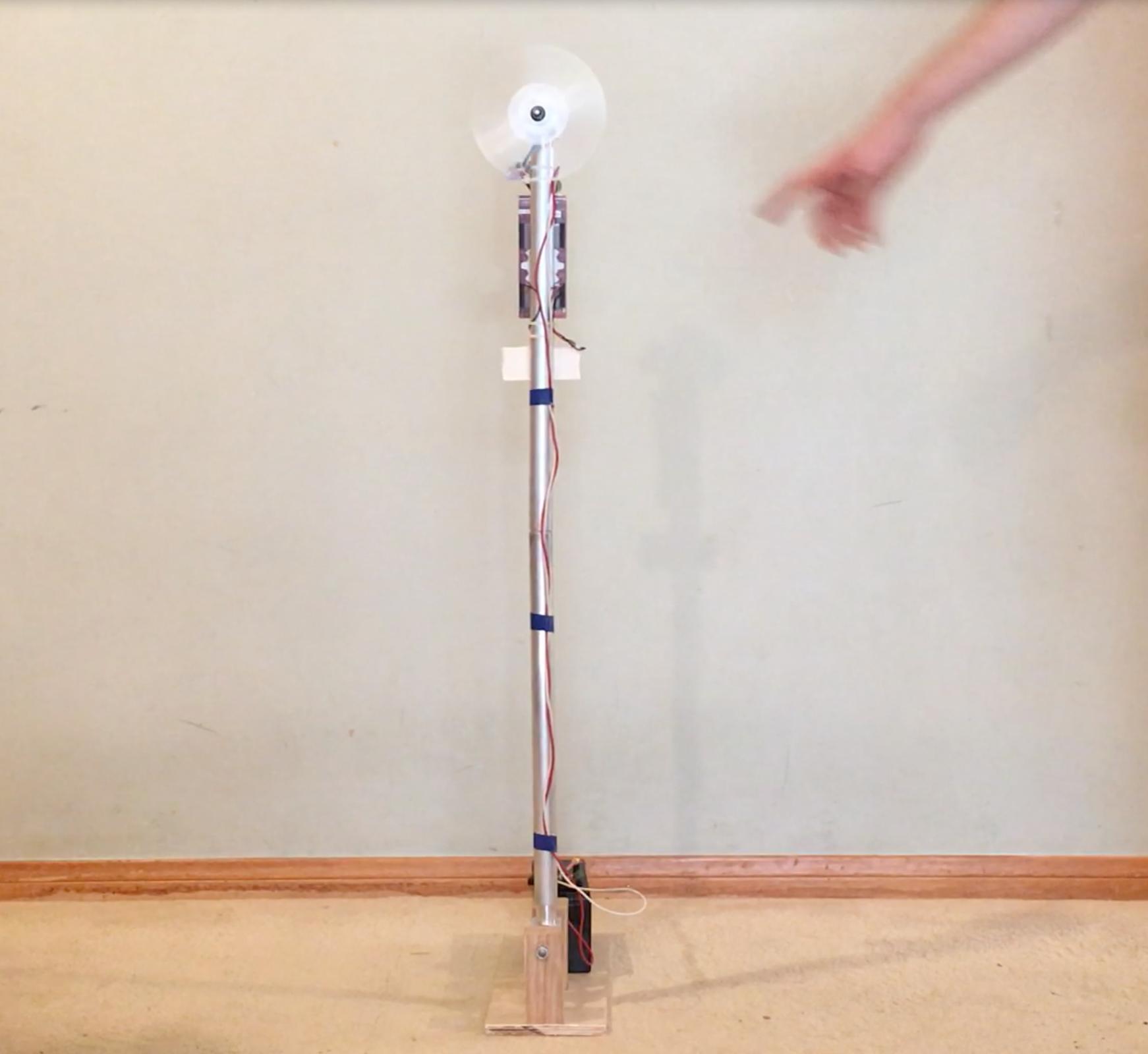 Reaction Wheel Inverted Pendulum