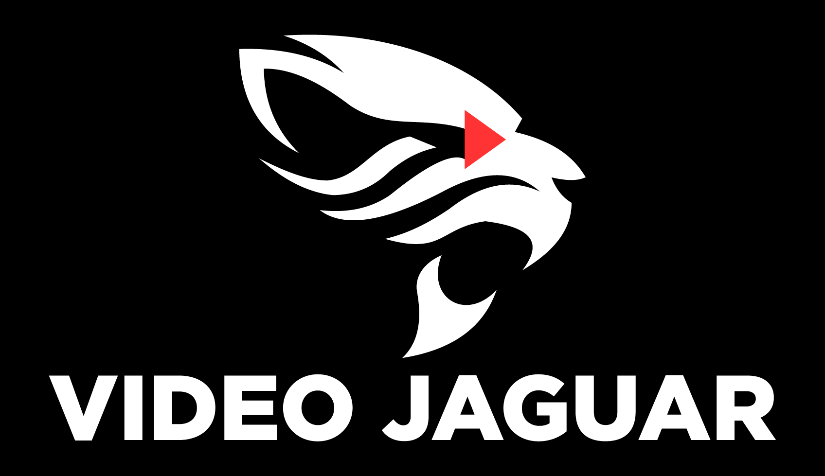 Video Jaguar