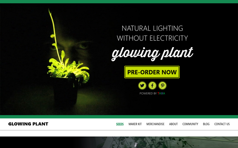 Glowing Plant - Natural lighting without Electricity  sc 1 st  AngelList & Glowing Plant - Natural lighting without Electricity - AngelList azcodes.com