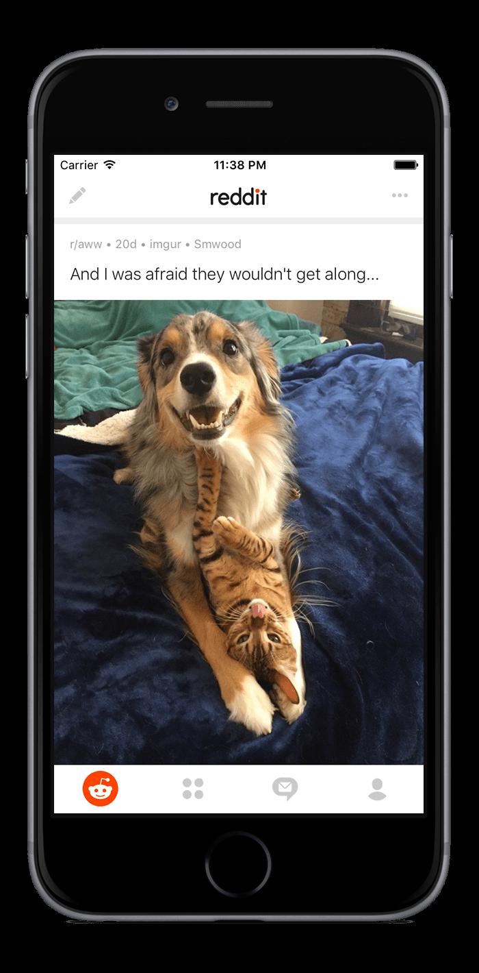 Reddit - Mobile App Marketing | AngelList