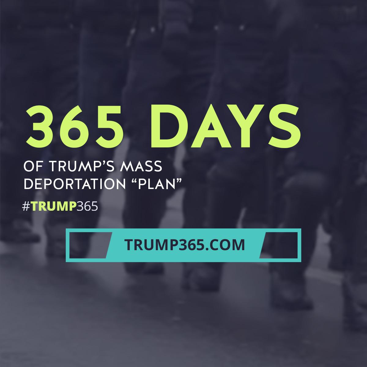 Trump 365