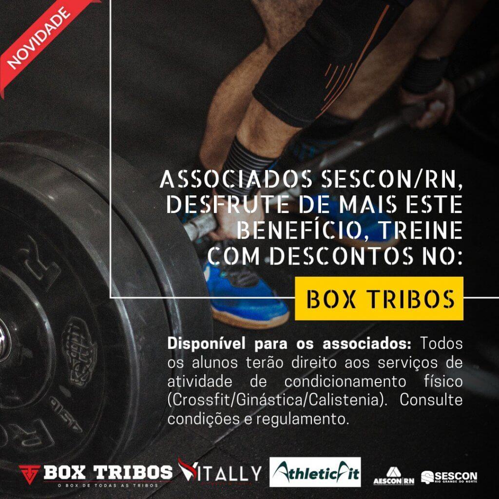 box tribos