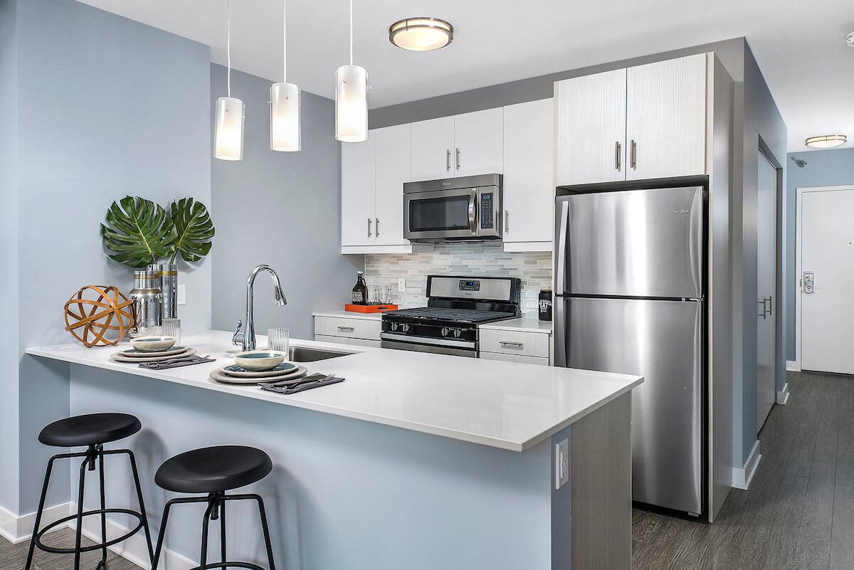 Apartments for rent in Chicago - 1001 S State