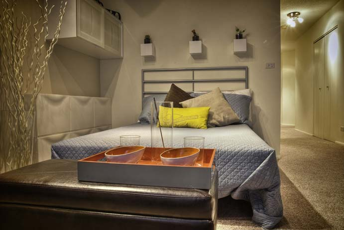Best apartment rental service in Chicago - 1111 N Dearborn