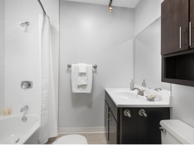 Best apartment search site in Chicago - Chestnut Place