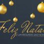 feliz natal 676x415_avatal