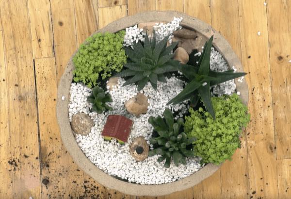 Jardim para todo tipo de casa!