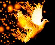 Quem tem o Espírito de Deus tem tudo