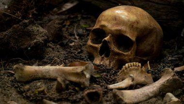 """O mundo que conhecemos e o """"vale de ossos secos"""", descrito na Bíblia"""