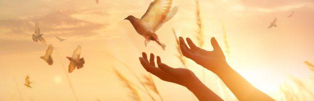 Você já recebeu o Espírito Santo?