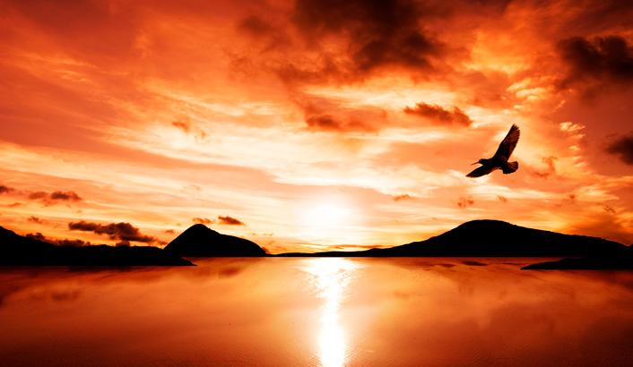 A paz do Pai pela fé no Filho - Universal.org - Portal Oficial da ...