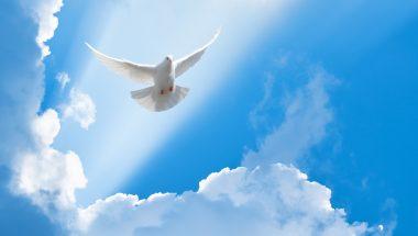 Discípulo sem o Espírito Santo?