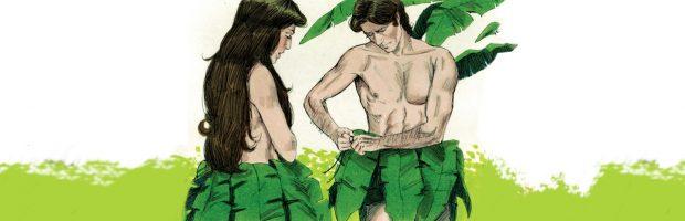 Nossas folhas de figueira