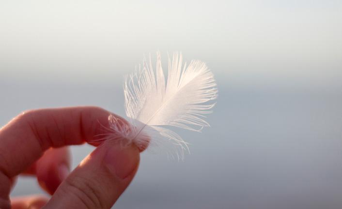 O peso de uma pluma