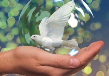 Como alcançar a paz que vem de Deus