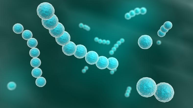 Vírus raro causa sintomas parecidos aos do Ebola