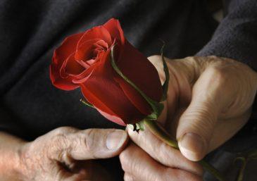 """A """"Hora dos Solteiros"""" e o gênesis do casamento"""