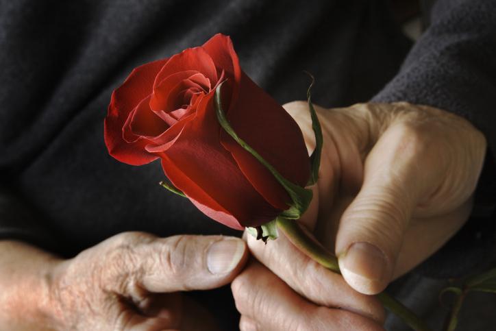 A Corrente da Rosa Sagrada