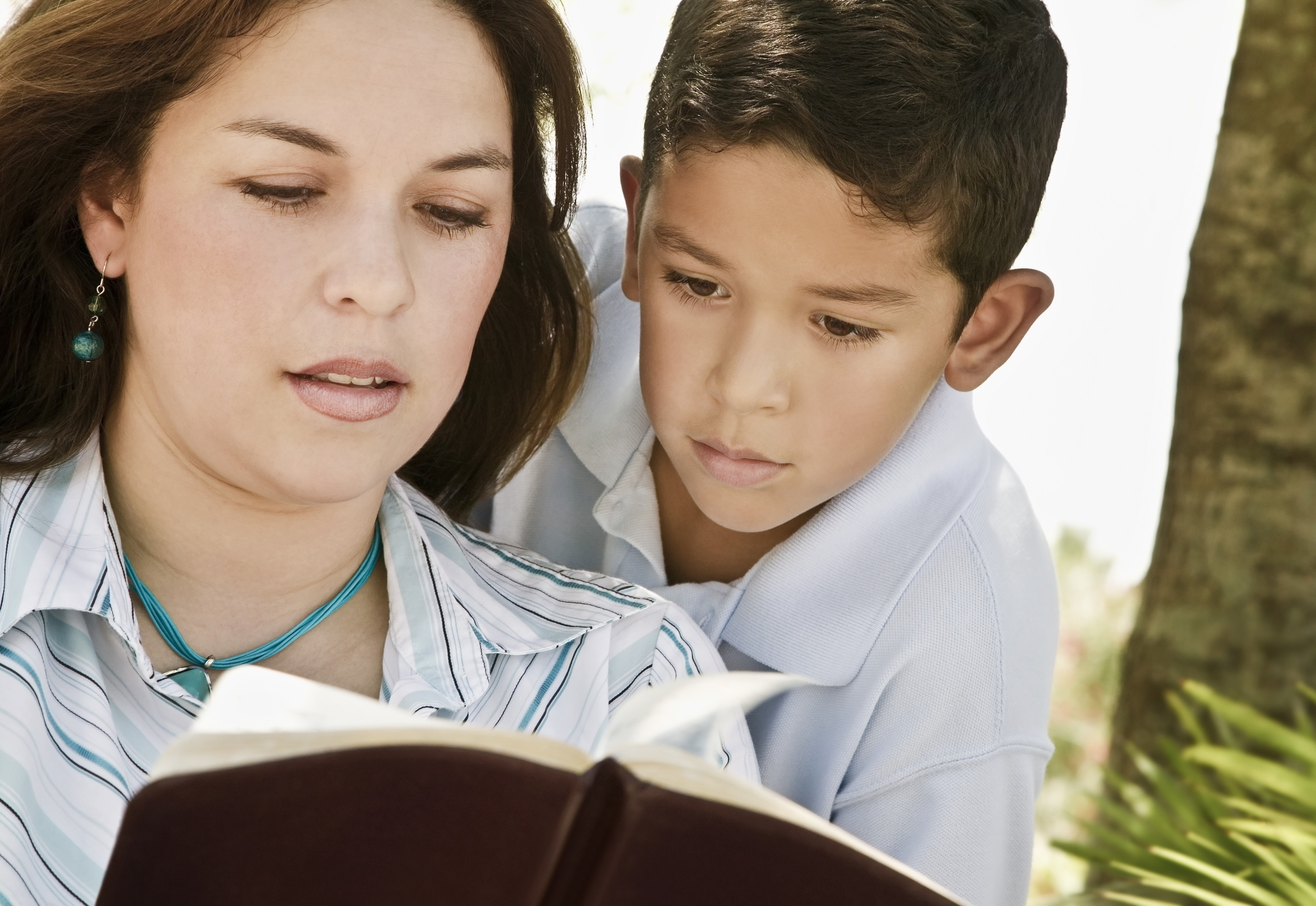Bíblia em 1 ano – Leia o 192º dia16 min read