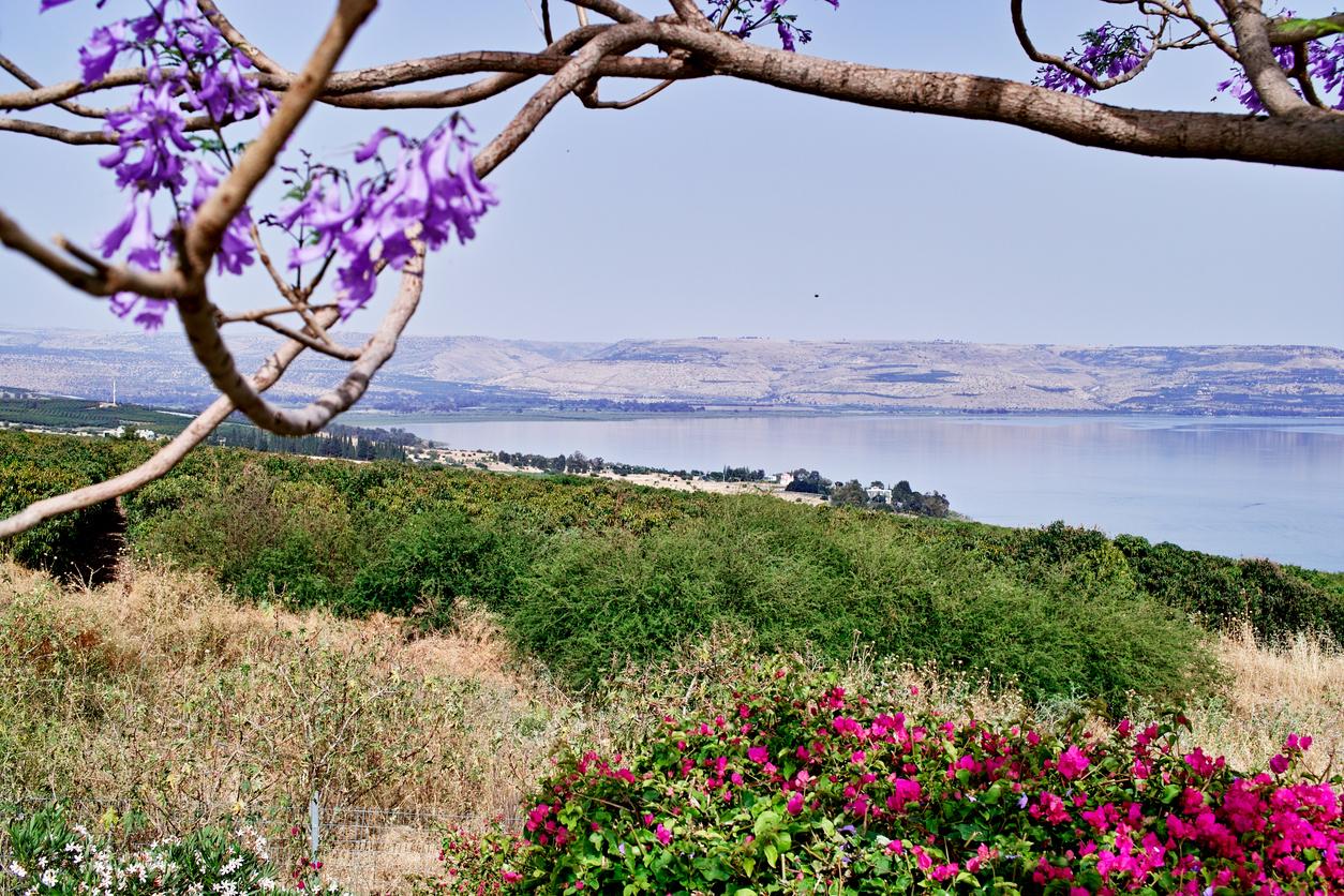 """Conheça a """"Cidade de Jesus"""", cenário de muitos milagres do Messias2 min read"""