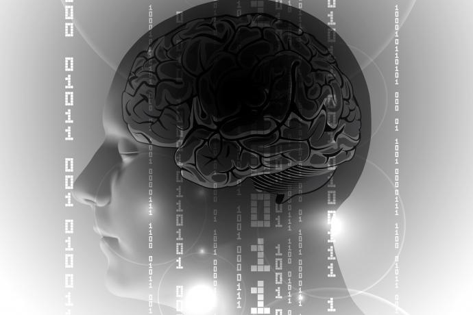 Como melhorar a qualidade da memória?3 min read