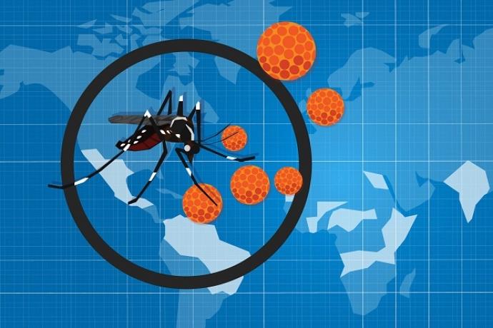 Conheça a diferença entre dengue, zika e chikungunya1 min read