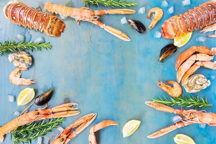 Por que você precisa ter cuidado com os frutos do mar?2 min read
