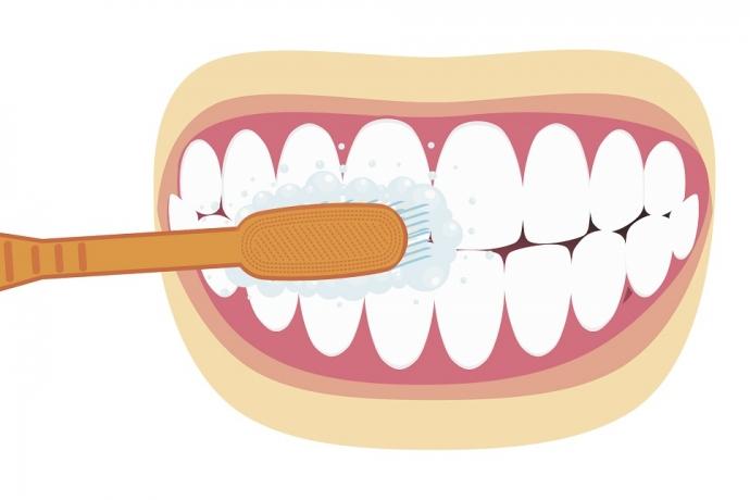 Você sabe usar escova, pasta e fio dental?3 min read