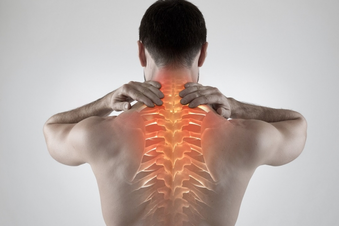 A saúde depende da boa postura3 min read
