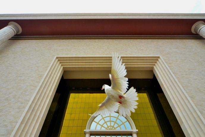 A cor dourada no Templo4 min read