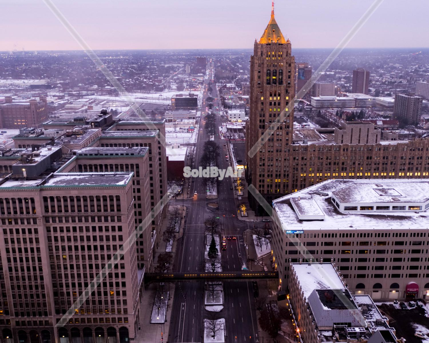 Drone Photo of  in Detroit Michigan