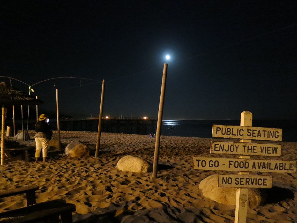 Signs and the Moon