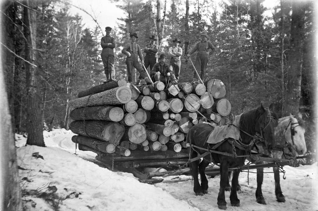 Horse drawn load of logs