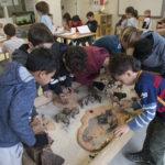 A Escola Dels Encants, em Barcelona, na Espanha, conta com uma arquitetura e ambientes diferentes para facilitar a livre circulação dos alunos