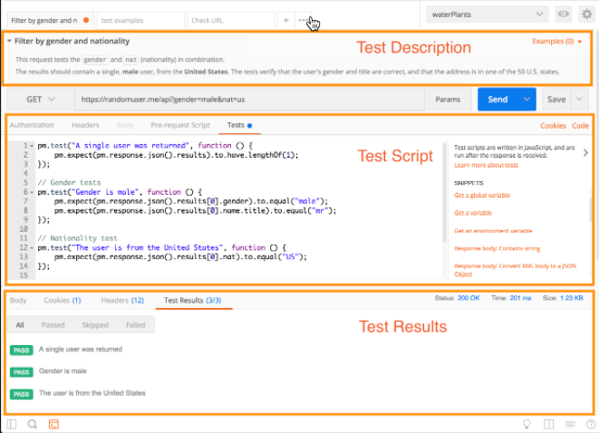 Test scripts | Postman Learning Center