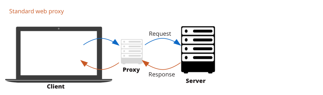 Client proxy settings in Postman - Postman Blog