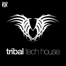 Tribal_tech_house