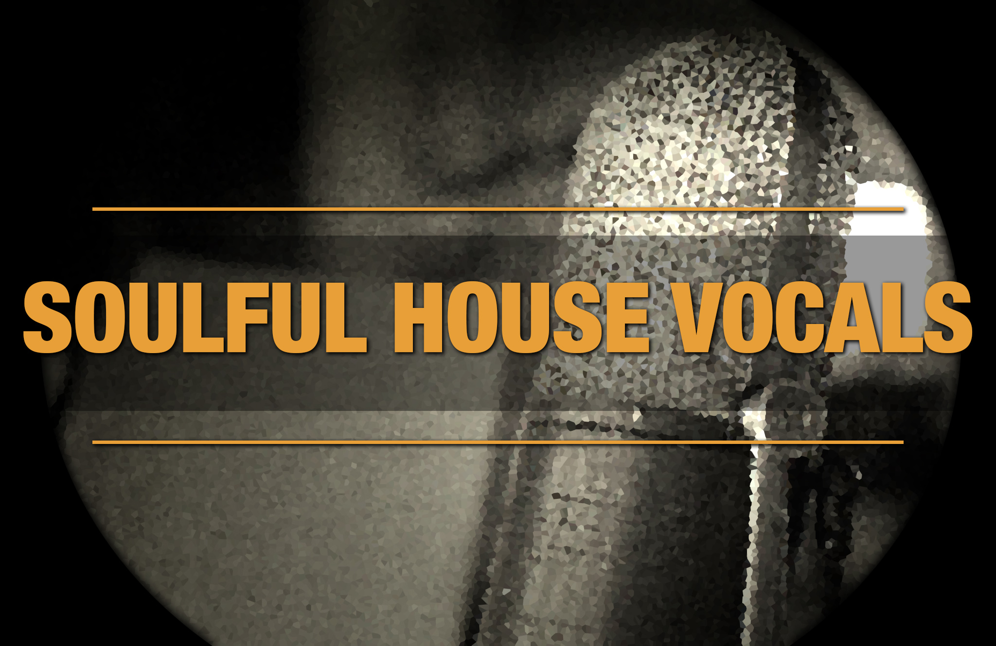 soundation soulful house vocals