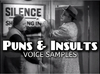 Puns_insults_voicesamples