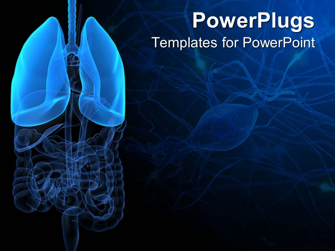 Powerpoint template 3d representation of lungs and human anatomy powerpoint template displaying 3d representation of lungs and human anatomy with intestines on dark blue and alramifo Choice Image