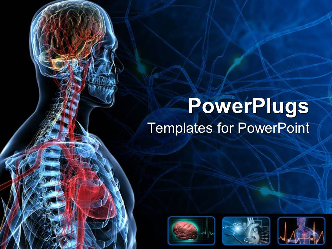 4000+ Anatomy Physiology PowerPoint Templates w/ Anatomy Physiology ...