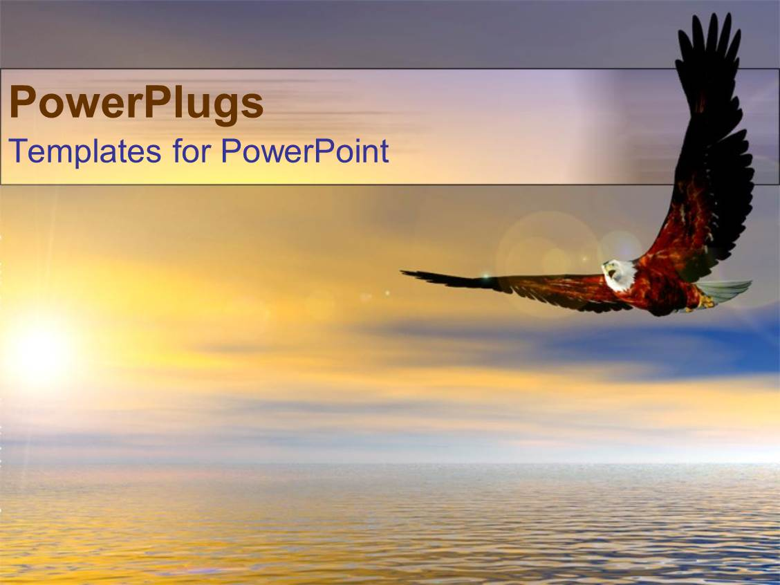 PowerPoint Template Displaying Bald Eagle Bird Flying Above Ocean Sunset as a Metaphor