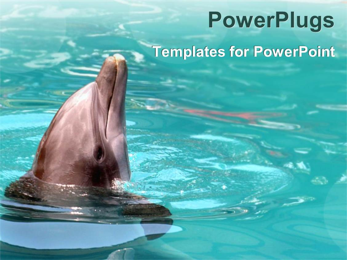 5000+ Calm PowerPoint Templates w/ Calm-Themed Backgrounds