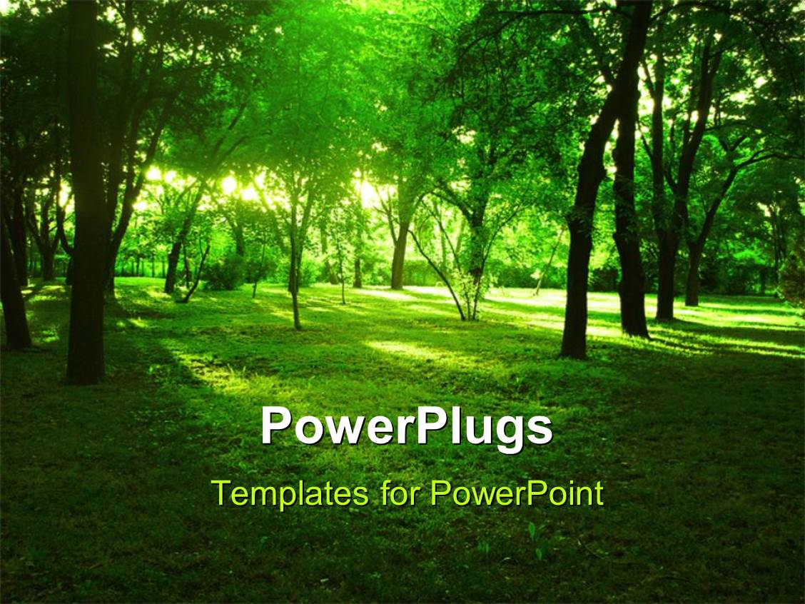 Forest powerpoint templates leoncapers forest powerpoint templates toneelgroepblik Choice Image