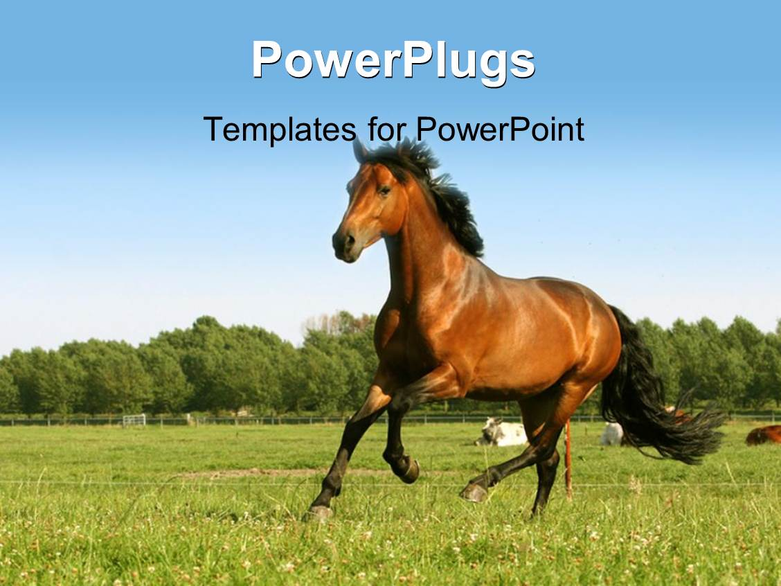 Powerpoint Template Red Horses Running In Green Nature 1803