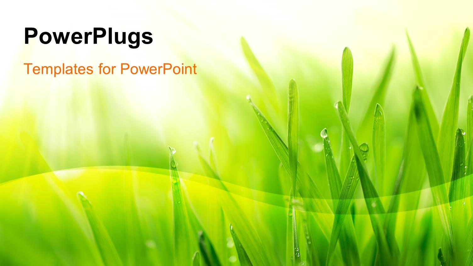 grass powerpoint templates - Kubre.euforic.co